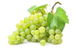 uva bianca san colombano al lambro vino Casa Valdemagna