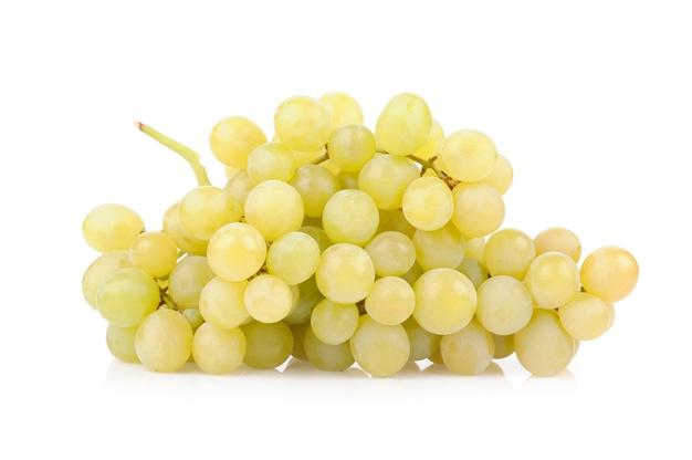 uva bianca san colombano al lambro casa valdemagna cantina enoteca vino